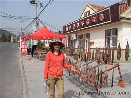 王山口村的鲅鱼