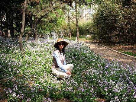 即墨墨河公园的花草
