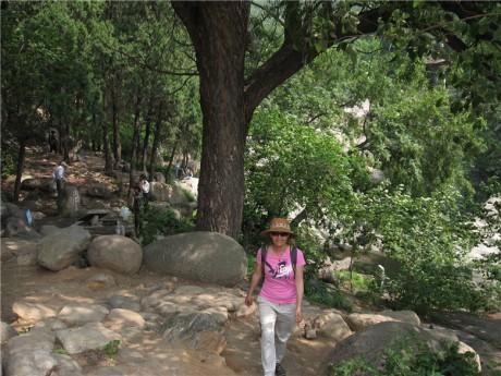 泰山天外村石峡园图片2