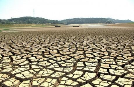 夏季干旱图片