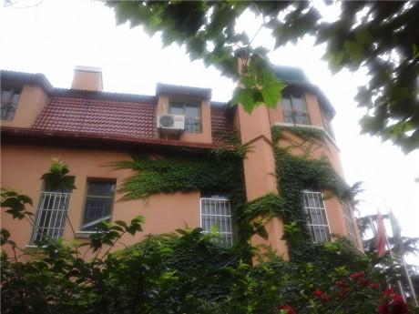 青岛德国建筑群图片5
