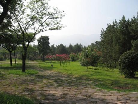兵马俑公园图片