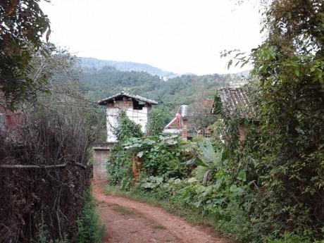 西一镇油榨村图片8