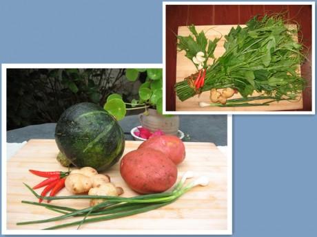 大理古城蔬菜图片