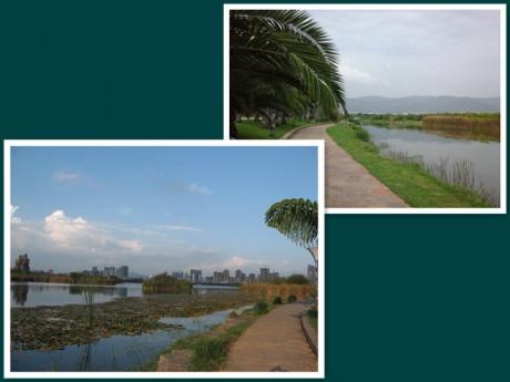 弥勒湖泉生态园图片6