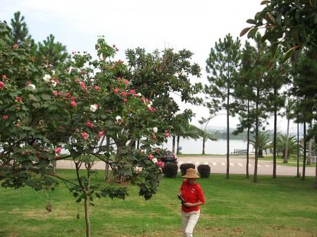 弥勒湖泉生态园图片8