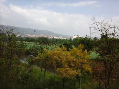 弥勒湖泉生态园图片9