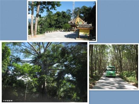 中缅边境景观图片