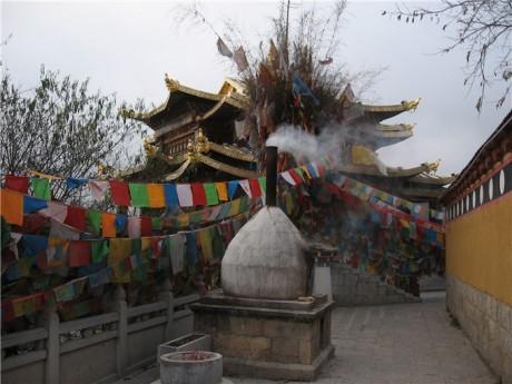 香格里拉龟山大佛寺图片2