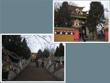 香格里拉龟山大佛寺图片1