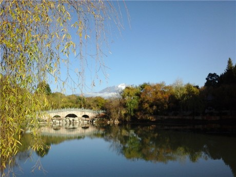 丽江黑龙潭公园图片2