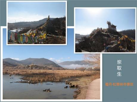 香格里拉松赞林景区岽取生图片
