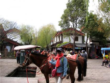 束河古镇图片1